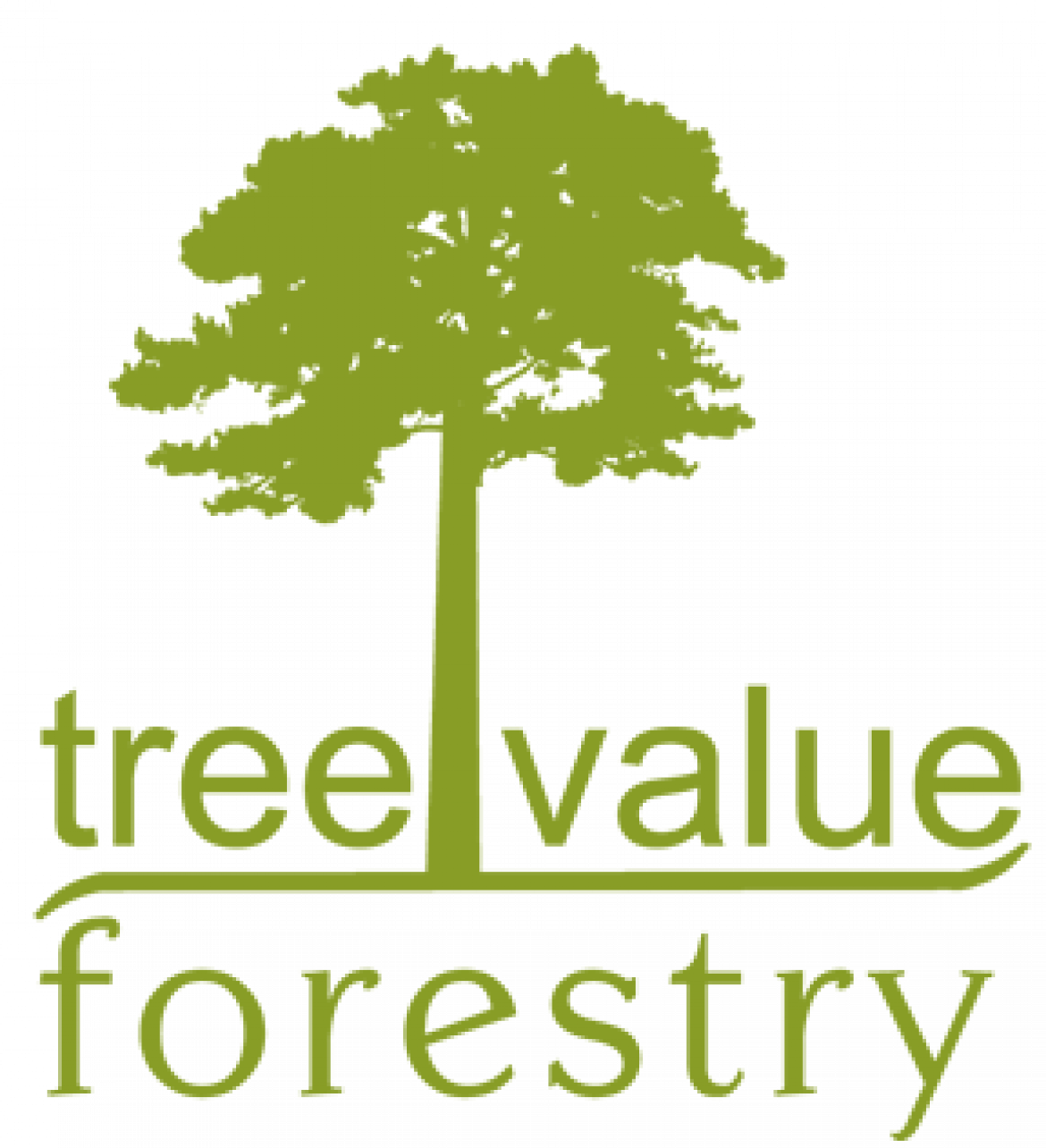 Logo der Tree Value Forestry GmbH